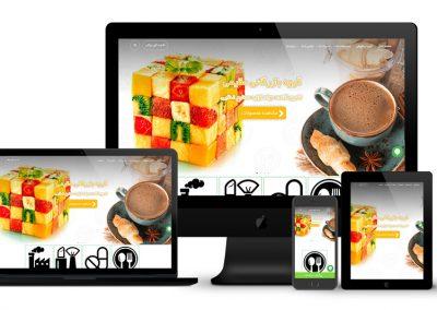 طراحی سایت تکنوشیمی